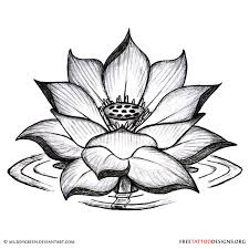 lotus designs black butterfly tattoos on the