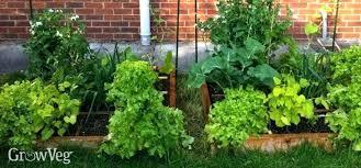 Veg Garden Layout Vegetable Garden Layout Planner Software 21pilotstickets Club