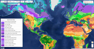 Interactive Map Global Forest Watch by Conservation U2013 Google Earth Outreach
