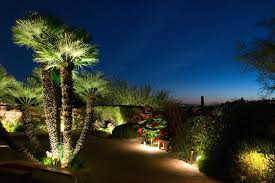 palm tree landscape lighting with without rope lights and 9 on