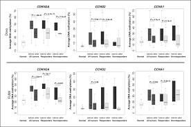 dna methylation status of key cell cycle regulators such as cdkna2