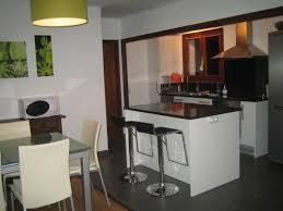 cuisine pour petit appartement cuisine pour petit appartement dootdadoo com idées de