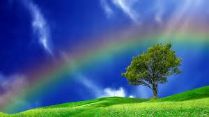real rainbows in the sky wallpaper