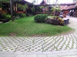 Backyard Layout Ideas Pictures Simple Backyard Landscaping Ideas Free Home Designs Photos