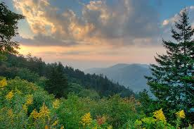 Tennessee Natural Attractions images Tennessee is for nature lovers jpg