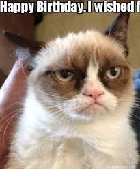 Cat Meme Maker - meme maker happy birthday i wished for a pusheen cat meme but