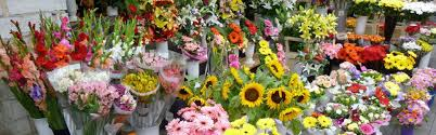 online flowers delivery online flower delivery chandigarh send cakes flowers and gifts