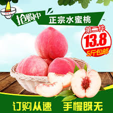 cuisiner des morilles s馗h馥s comment cuisiner les tomates s馗h馥s 52 images cuisiner les