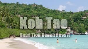 koh tao thailand haad tien beach resort shark bay hd youtube