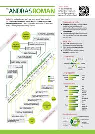 visual resume examples top infographic resume andras roman visual resume 2012 top infographic resume andras roman visual resume 2012 multimedia developer web