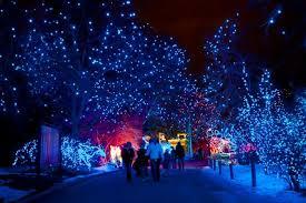 12 best christmas light displays in colorado 2016