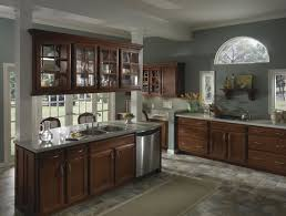 Glass Panels Kitchen Cabinet Doors Fabulous Glass Kitchen Cabinet Doors Gallery Regarding With Panels
