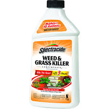 weed and grass killer for vegetable garden all about grass