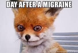 Migraine Meme - day after a migraine stoned fox meme generator
