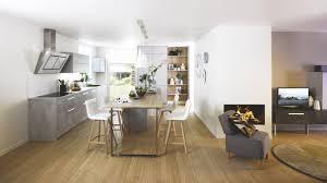 cuisine en beton cuisine équipée scandinave avec îlot label béton grise cuisinella