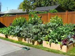 4x8 Raised Bed Vegetable Garden Layout Diy Vegetable Garden Ideas Diy Backyard Vegetable Garden House