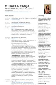 business partner resume samples visualcv resume samples database