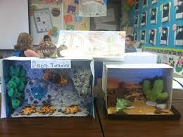 Animal Report     Third Grade     Informational Writing     Lapbook
