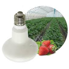 most efficient grow light most efficient led where can i buy a wall mounted grow light buy