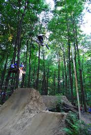 24 best biking images on pinterest bmx bikes danny o u0027donoghue