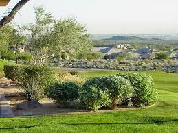 how to desert landscape your yard tips for desert landscape