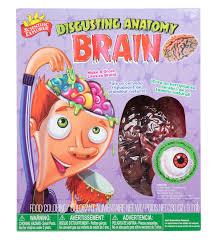 amazon com scientific explorer disgusting anatomy brain toys u0026 games