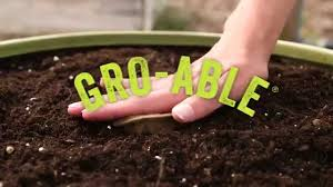 Miracle Grow Patio by Miracle Gro Gro Ables Vegetable Seed Pods Youtube