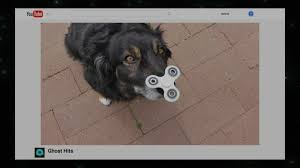 the ghost emoji is perfect gq dogs love fidget spinners midnight with chris hardwick comedy