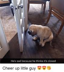 Cheer Up Meme - he s sad because he thinks it s closed cheer up little guy