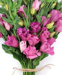 Lisianthus Flower Haul Online Flower Delivery Free Shipping Lisianthus