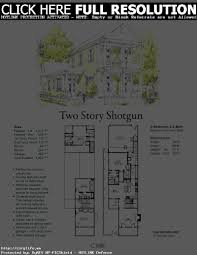 shotgun house plans french house plans modern 2 story countr luxihome