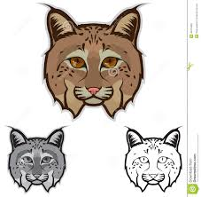 bobcat stock illustrations u2013 596 bobcat stock illustrations