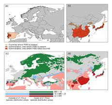 Current Map Of Europe Potential Distribution Of Pine Wilt Disease Under Future Climate