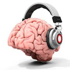 light up your brain poetry lights up your brain like a favorite song fmri shows