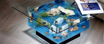 the 10 craziest fish tanks ever created azula