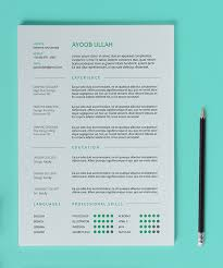 Free Indesign Resume Template The Best Cv U0026 Resume Templates 50 Examples Design Shack