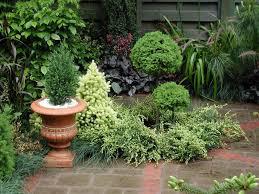 lawn u0026 garden small contemporary modern london garden design
