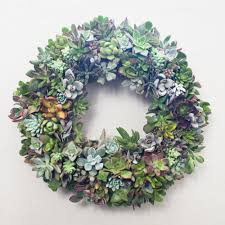 succulent wreath and christmas wreath with succulents juicykits