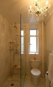 Small Bathroom Showers 69 Best Small Bathroom Images On Pinterest Room Bathroom Ideas