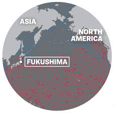Ocean Currents Map Fukushima Nuclear Waste Could Be Dumped In Pacific Ocean Ntd Tv