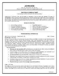 Consulting Resume Template Thesis Like Theme Order Professional Masters Essay On Hillary