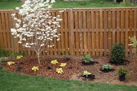 landscaping with small trees landscaping design ideas xtend