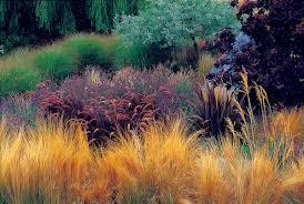 designing with ornamental grasses wisconsin gardening