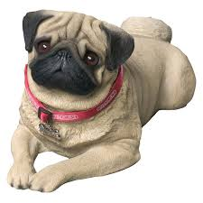 sandicast size fawn pug sculpture fawn pug and products