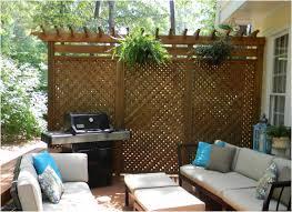 Garden Screening Ideas Backyard Backyard Ideas Patio Awful Garden Screening Privacy