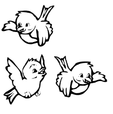 birds coloring pages coloring kids