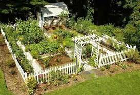 fabulous vegetable garden vegetable garden design ideas www