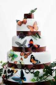 beautiful butterfly cake sets 5 colors butterfly cakes favors