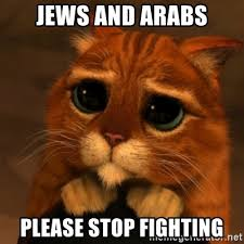 Orange Jews Meme - jews and arabs please stop fighting shrek cat v1 meme generator