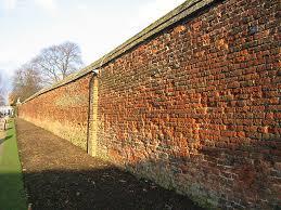 file rose garden wall hampton court palace geograph org uk
